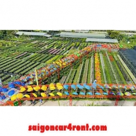 Transfer from Ho Chi Minh to Sa Dec Flower Village